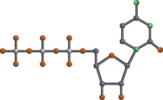 pyrimidinový nukleotid