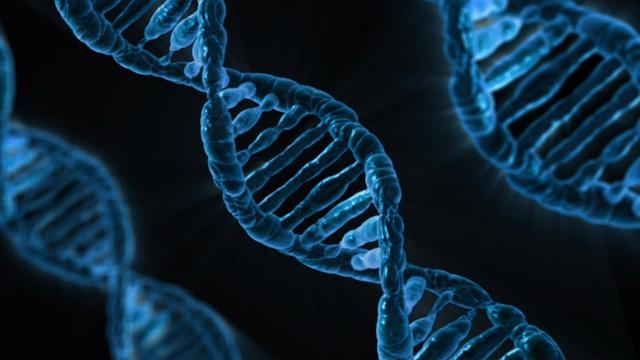 vlákno DNA